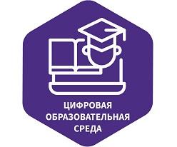 Цифровая образовательная среда - не замена очного обучения